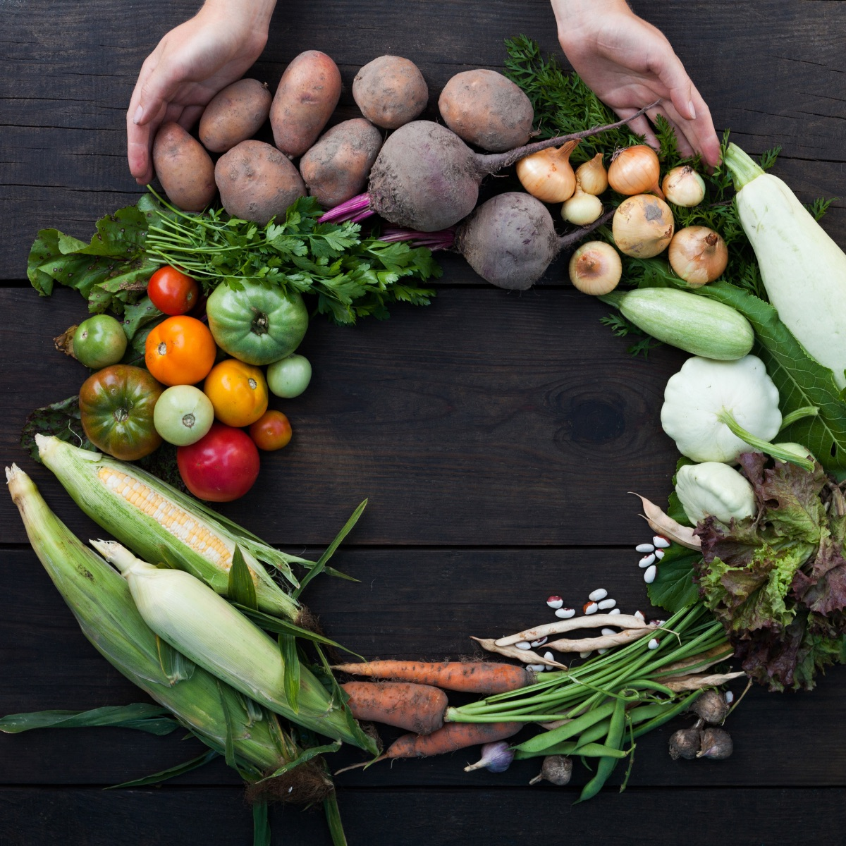 Sustainable Food System
